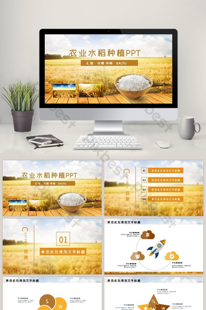 Agriculture Rice Rice Grain Harvest Ppt Template