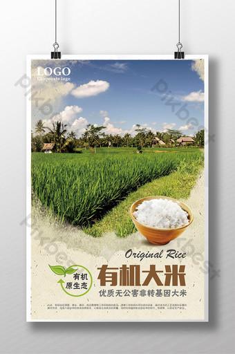 有機大米有機穀物促銷海報 模板 PSD
