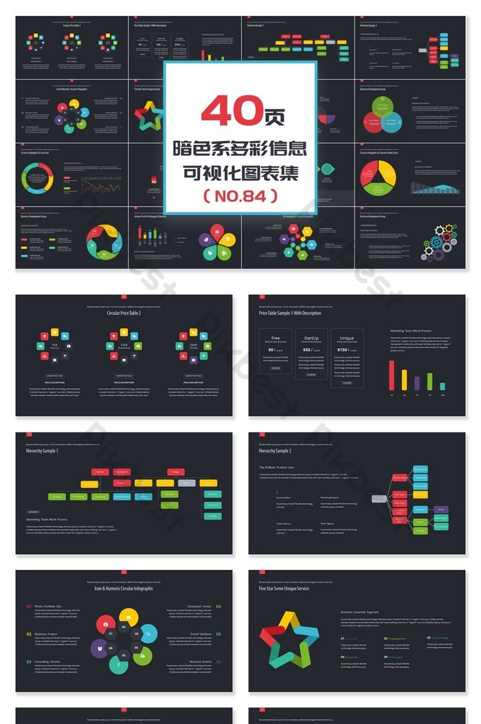 40 Pages Dark Color Colorful Information Visualization Ppt Chart
