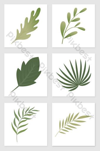 drawing leaves set of illustration elements Illustration Template PSD