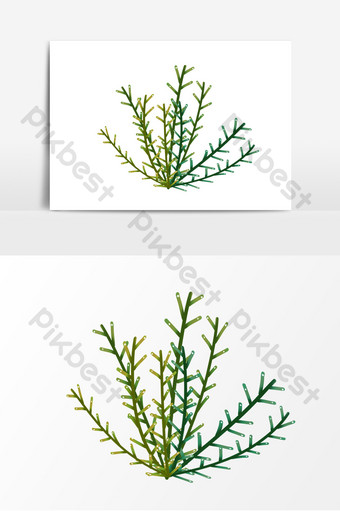 Seaweed hand drawn cartoon elements PNG Images Template PSD