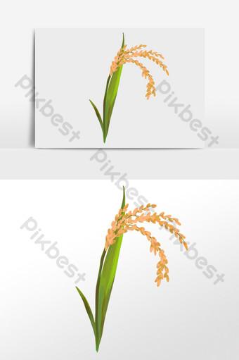 Vẽ tay cánh đồng lúa nông nghiệp hạt trưởng thành minh họa Công cụ đồ họa Bản mẫu PSD