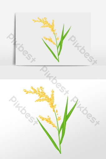 Gambar Ilustrasi Tanaman Padi Template Psd Png Vektor Download Gratis Pikbest