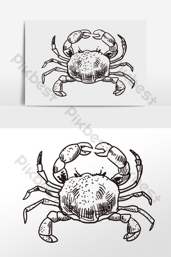 drawing line drawing sketch seafood crab illustration PNG Images Template PSD