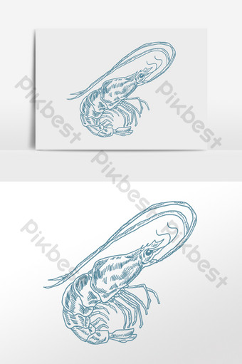 drawing line drawing sketch aquatic seafood lobster illustration PNG Images Template PSD