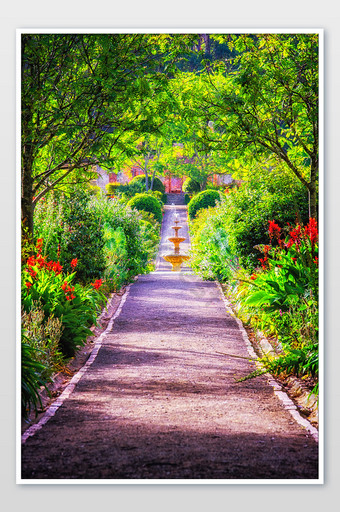 The natural scenery photography of the garden path in Port Arthur, Tasmania Photo Template JPG