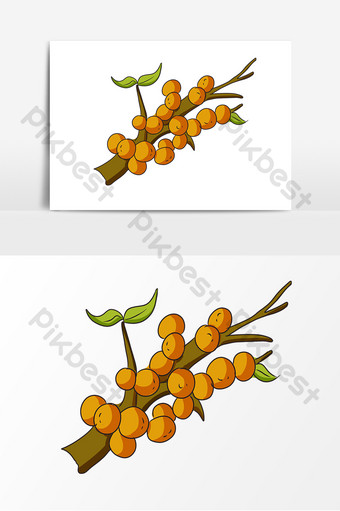 Hand drawn plant sea buckthorn decorative elements PNG Images Template PSD