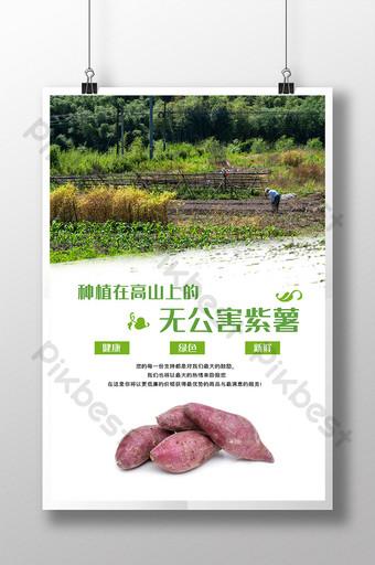 綠色自然無污染紫薯甜農產品海報 模板 PSD