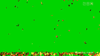Falling Maple Leaf Green Screen Video Mp4 Free Download Pikbest